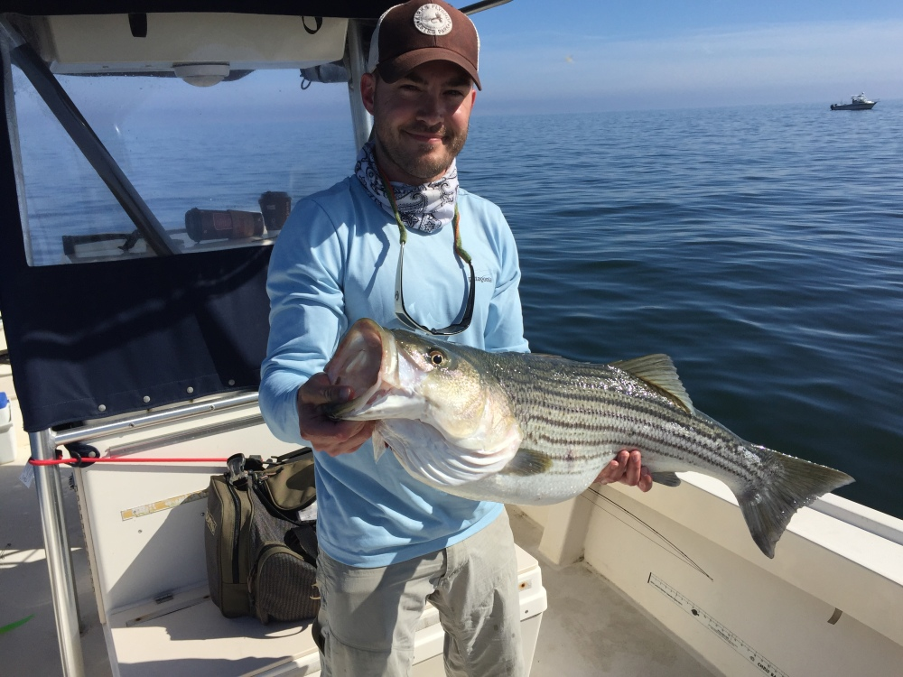 Fishing report middle chesapeake bay any water will do for Chesapeake fishing report